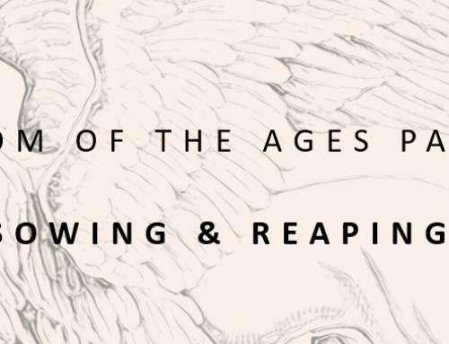 WISDOM OF THE AGES IV: SOWING AND REAPING